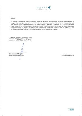 auditoria-cuentas_anuales_froet_2015_03_3